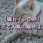 猫トイレの砂どうやって選ぶの?口コミから人気の猫砂を探ろう!