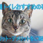 猫トイレでおすすめの砂のメリット・デメリットを含めてご紹介
