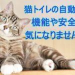 猫トイレの自動掃除の性能や安全性など商品について詳しくご紹介!